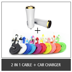 2 In 1 Cable + Car Charger